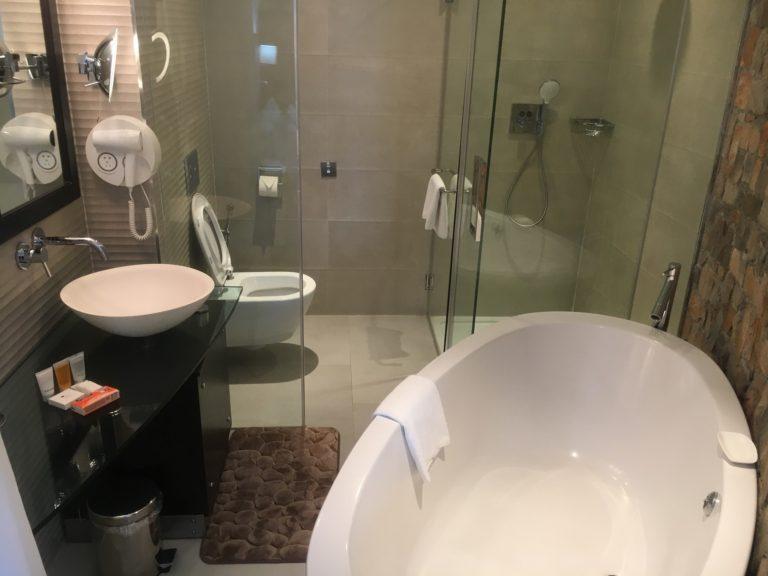 Standard Room Bathroom at L'eola
